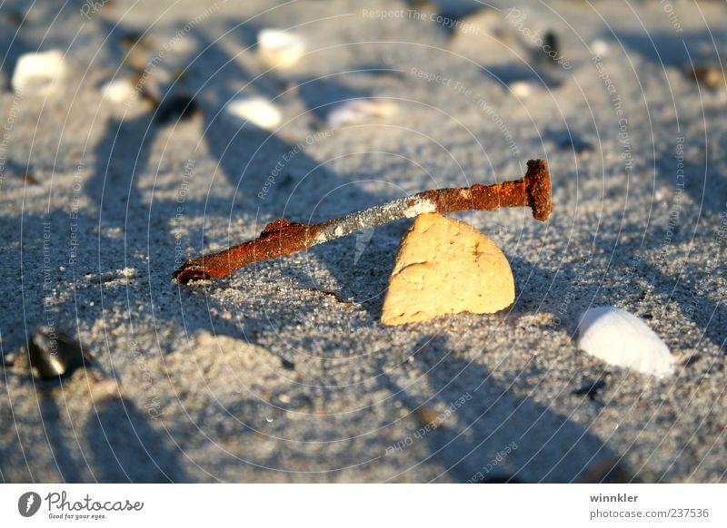 strandgut Umwelt Sand Küste Strand Ostsee Meer Stein Metall Natur ruhig Unendlichkeit Verfall Vergänglichkeit Wandel & Veränderung Farbfoto Außenaufnahme
