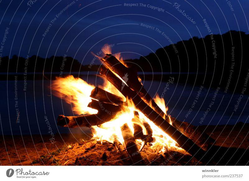 stürmisches strandlagerfeuer Umwelt Natur Landschaft Urelemente Feuer Wasser Himmel Nachthimmel Horizont Sommer Schönes Wetter Wald Seeufer Strand Holz Erholung