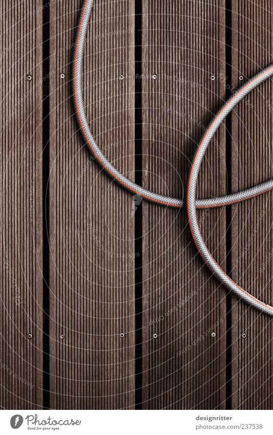 Haustier Sommer Schönes Wetter Bodenbelag Holzfußboden Dielenboden Gartenschlauch Wasserschlauch Maserung wasserfest wetterfest Streifen Furche Kurve Reihe
