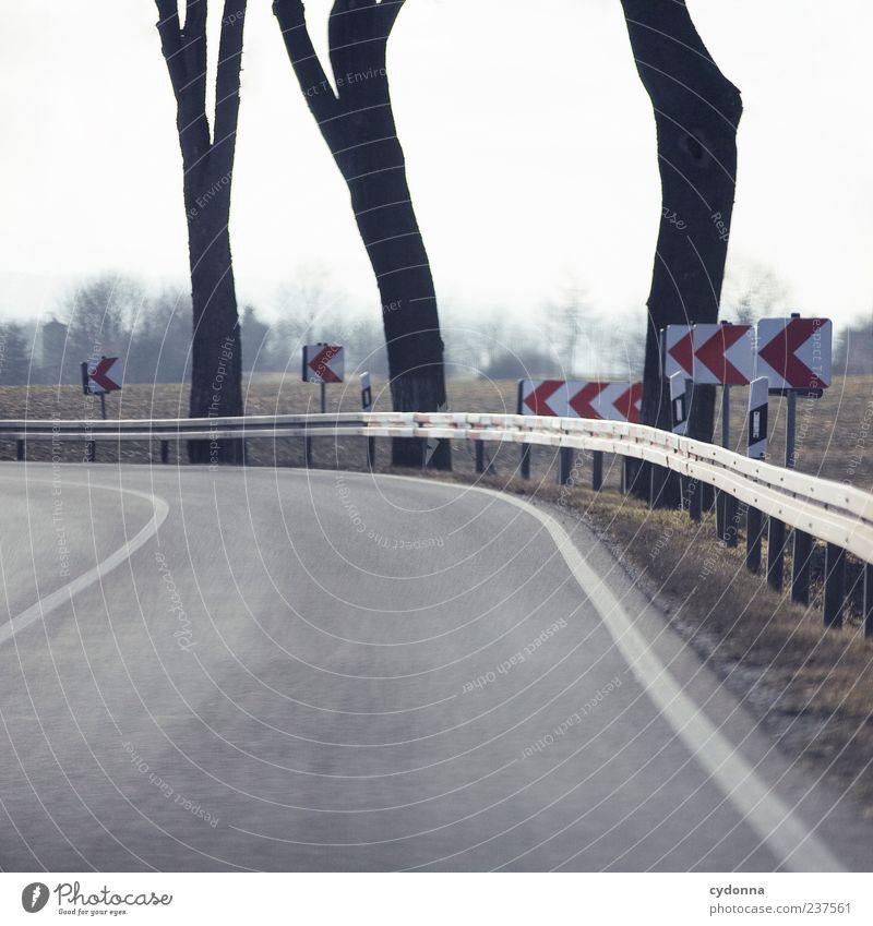 Scharf nach Links Himmel Natur Baum ruhig Einsamkeit Umwelt Landschaft Straße Wiese Bewegung Wege & Pfade Stil Feld Schilder & Markierungen Design Verkehr