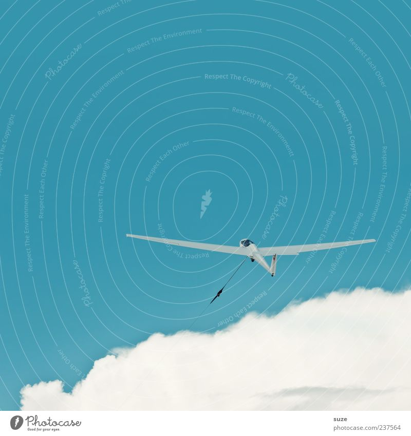 Das Blaue vom Himmel Freizeit & Hobby Freiheit Luftverkehr Umwelt Wolken Klima Schönes Wetter Wind Sportflugzeug Segelflugzeug fliegen Freundlichkeit hell blau
