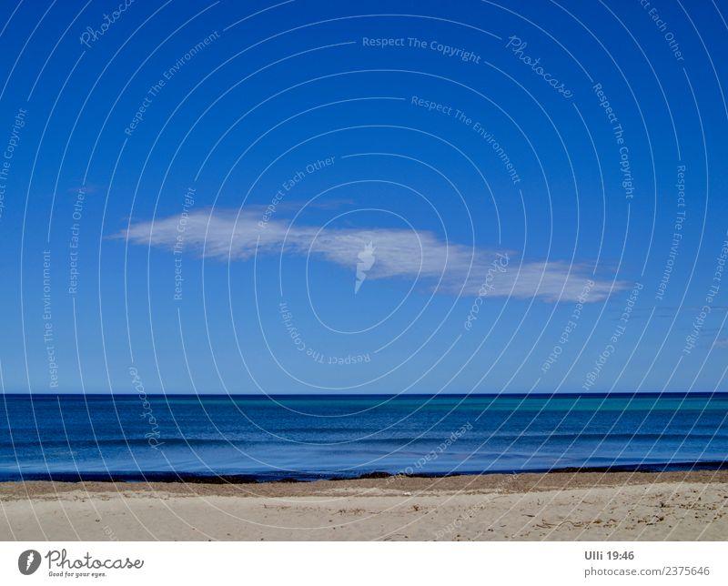 Strand von Can Picafort. Himmel Ferien & Urlaub & Reisen Stadt Wasser Sonne Meer Erholung Frühling Küste Stimmung Sand Freizeit & Hobby Zufriedenheit Horizont