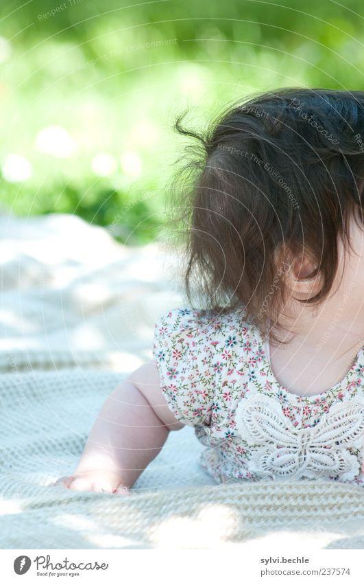 incognito Mensch Natur Sommer Mädchen Blume Erholung Wiese Leben Spielen Haare & Frisuren Garten Kindheit Baby außergewöhnlich liegen Bekleidung