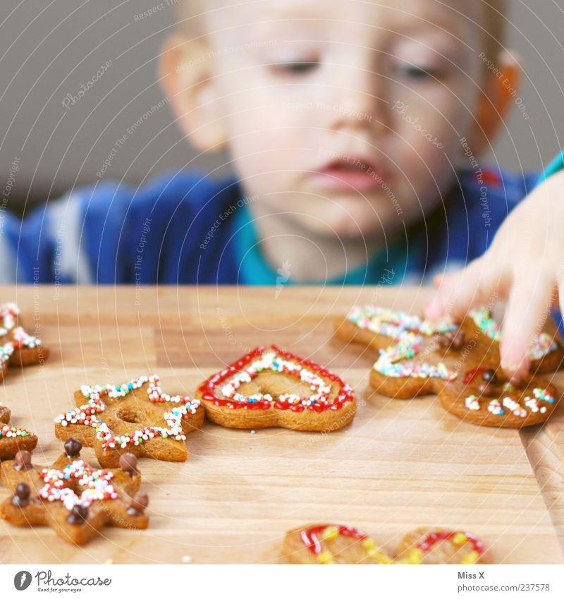 Plätzchen-Dieb Mensch Kind Weihnachten & Advent Hand Essen Junge Lebensmittel Dekoration & Verzierung Kindheit Ernährung Kochen & Garen & Backen süß Stern (Symbol) lecker Süßwaren Kleinkind
