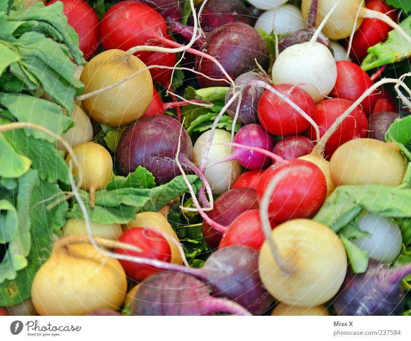 Bunte Kugeln Ernährung Lebensmittel Gesundheit frisch Markt Gemüse Scharfer Geschmack lecker Bioprodukte Vegetarische Ernährung Radieschen Rüben Knollengewächse Rettich Wochenmarkt Gemüseladen