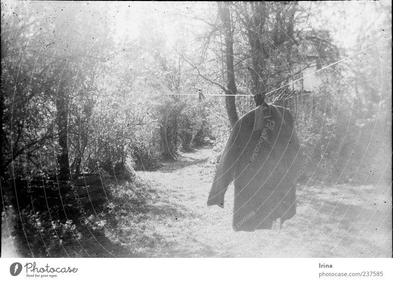 Vredebox | Heimat Natur Garten Sträucher retro Idylle Hemd Jacke analog Geborgenheit Wäscheleine aufhängen