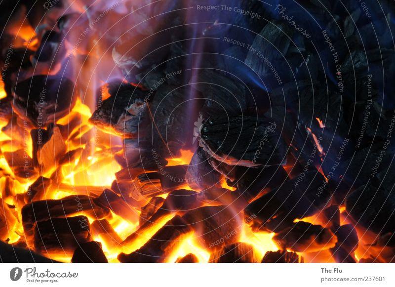 Glow Feuer Wärme Grill Holz heiß blau gelb schwarz glühen Grillen Energie Holzkohle Farbfoto Detailaufnahme Menschenleer Kontrast Vogelperspektive Flamme Glut