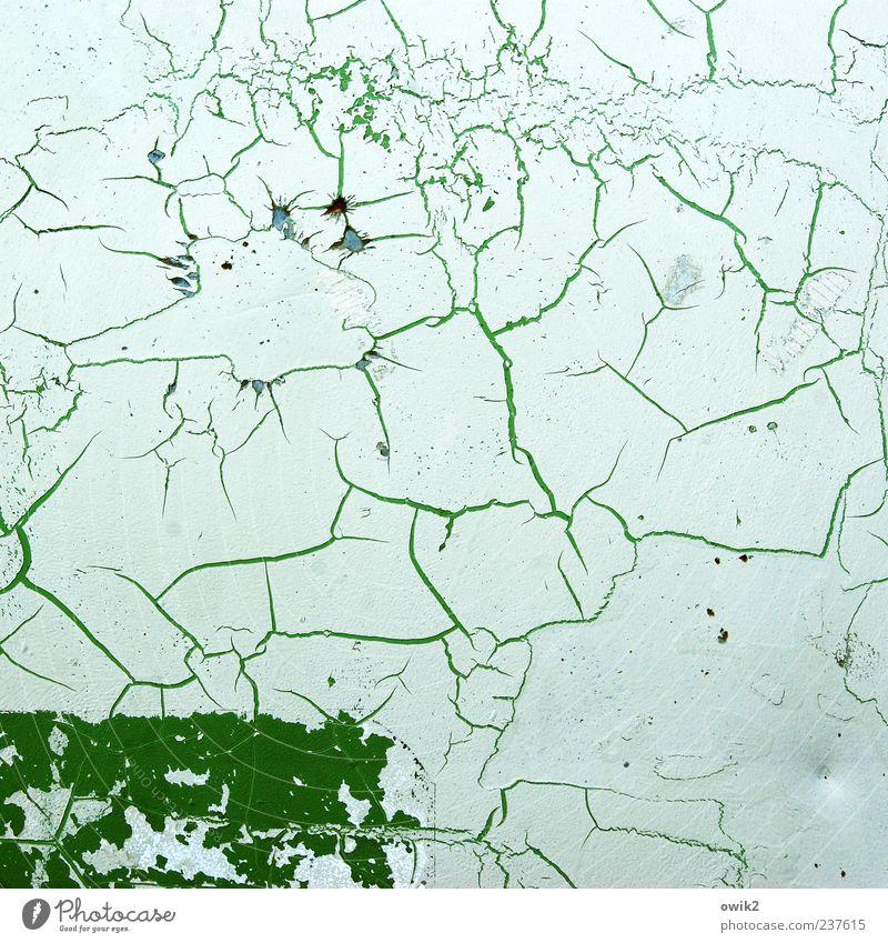 Strukturförderprogramm weiß grün Farbe Linie hell natürlich Wandel & Veränderung Vergänglichkeit einfach Spuren Vergangenheit Verfall Riss bizarr eckig Zacken