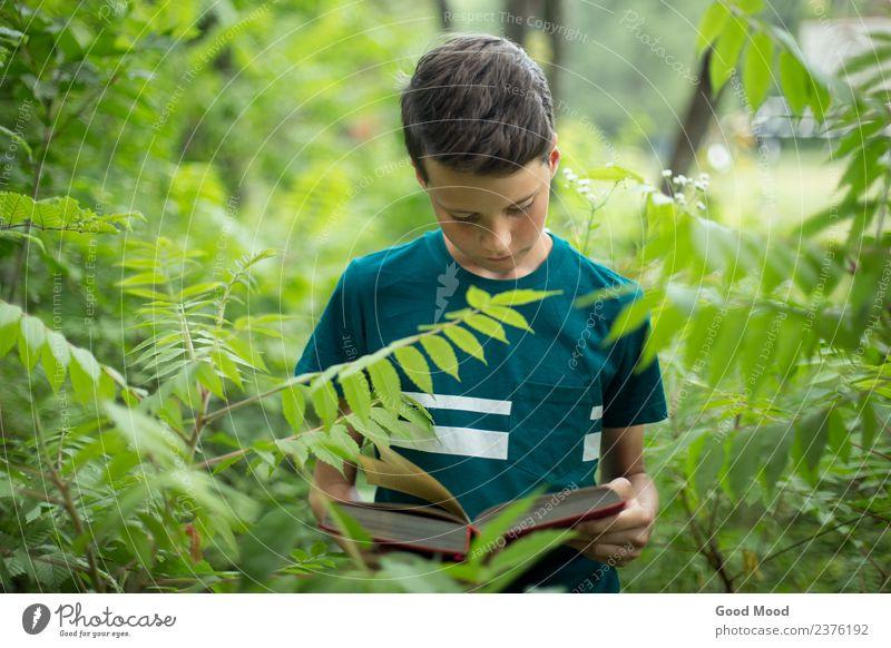 Konzept für die Naturbildung - Junge im Wald Lesebuch Freizeit & Hobby lesen Sommer Schule lernen Mensch Mann Erwachsene Kindheit Jugendliche Buch Herbst Baum