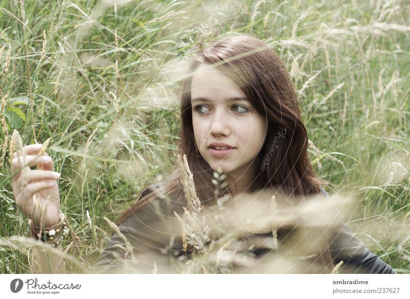 just a dream Mensch feminin Junge Frau Jugendliche Erwachsene 1 Umwelt Natur Sommer Wiese brünett langhaarig Scheitel beobachten schön einzigartig Gefühle
