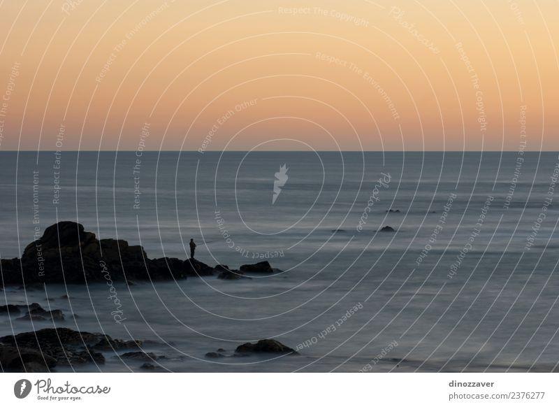 Silhouette von Fischen im Sonnenuntergang schön Ferien & Urlaub & Reisen Sommer Strand Meer Natur Landschaft Sand Himmel Horizont Wetter Küste lang blau gelb