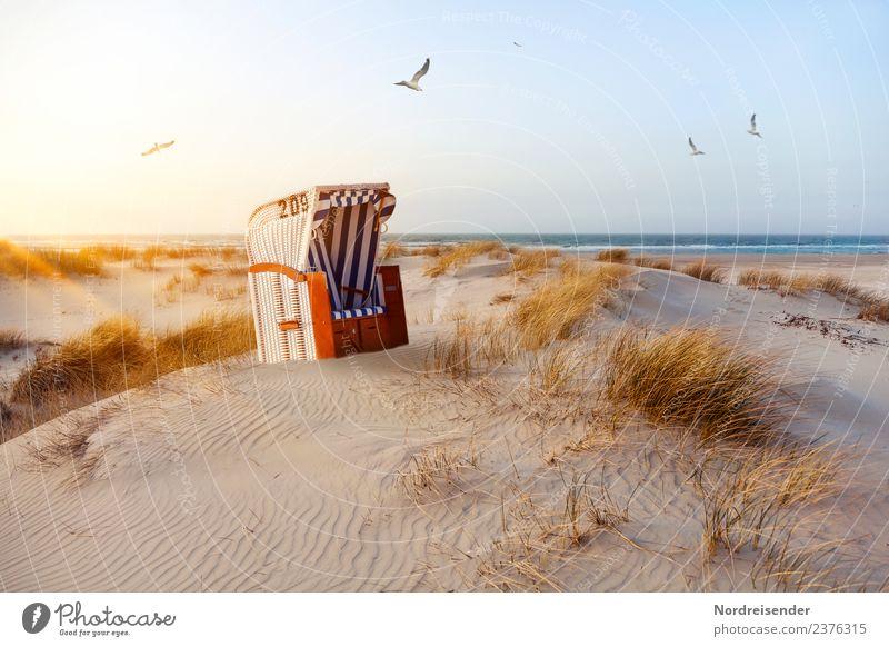 Strandkorb in den Dünen Natur Ferien & Urlaub & Reisen Sommer Wasser Landschaft Sonne Meer Küste Gras Tourismus Freiheit Sand Fröhlichkeit Insel Schönes Wetter