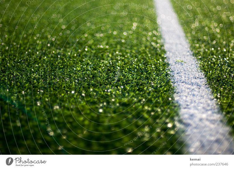 Auslinie Linie Fußball Sportstätten Fußballplatz Kunstrasen Kunstrasenplatz glänzend grün weiß Halm künstlich Farbfoto Außenaufnahme Nahaufnahme Menschenleer