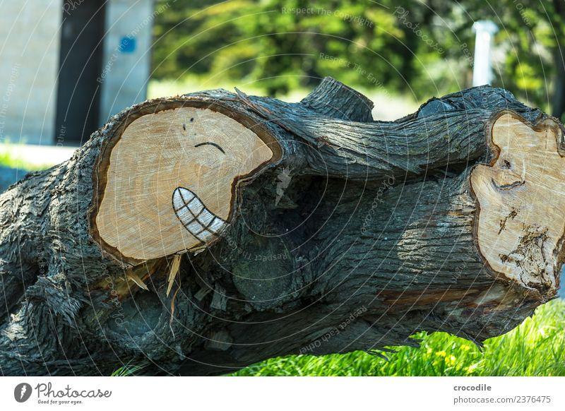 # 745 urban art Holz Baumstamm Ast Smiley Gesicht lachen grinsen Kunst Zeichnung lustig Farbfoto