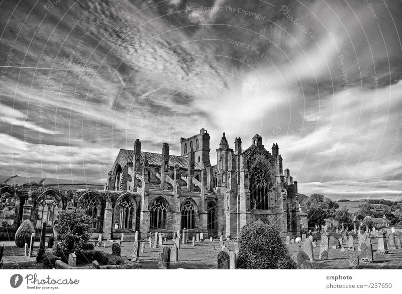 Abbey, oh Abbey... Architektur Gebäude Stein Kraft Kirche Macht Schutz Denkmal Wahrzeichen Ruine Sehenswürdigkeit Dom Friedhof Schwarzweißfoto Schottland Endzeitstimmung