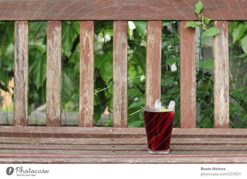 Ein Prosit auf die 100! Getränk Erfrischungsgetränk Limonade Glas Natur Schönes Wetter Efeu Garten Holz genießen trinken gut braun grün rot Stimmung Freude