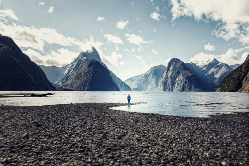 Milford Sound, baby! feminin Junge Frau Jugendliche Erwachsene Körper Landschaft Wasser Himmel Sommer Schönes Wetter Küste Fjord einfach Freiheit Abenteuer