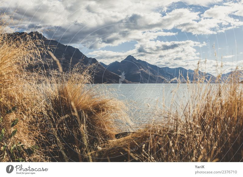 Wakatipu Himmel Natur Ferien & Urlaub & Reisen Sommer schön Wasser Landschaft Wolken Ferne Berge u. Gebirge Küste Gras Tourismus Freiheit See Ausflug