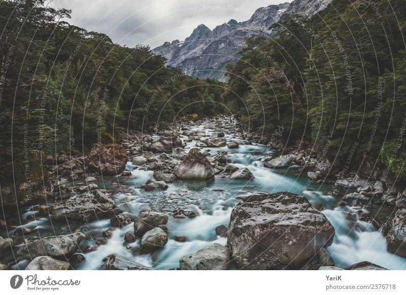 wild & free Ferien & Urlaub & Reisen Tourismus Ausflug Abenteuer Ferne Freiheit Safari Expedition Camping Berge u. Gebirge wandern Natur Landschaft Pflanze