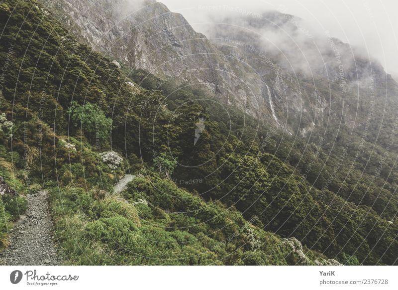 keep track Natur Ferien & Urlaub & Reisen Pflanze Sommer Landschaft Baum Ferne Berge u. Gebirge Gras Tourismus Freiheit Felsen Ausflug wild Regen wandern