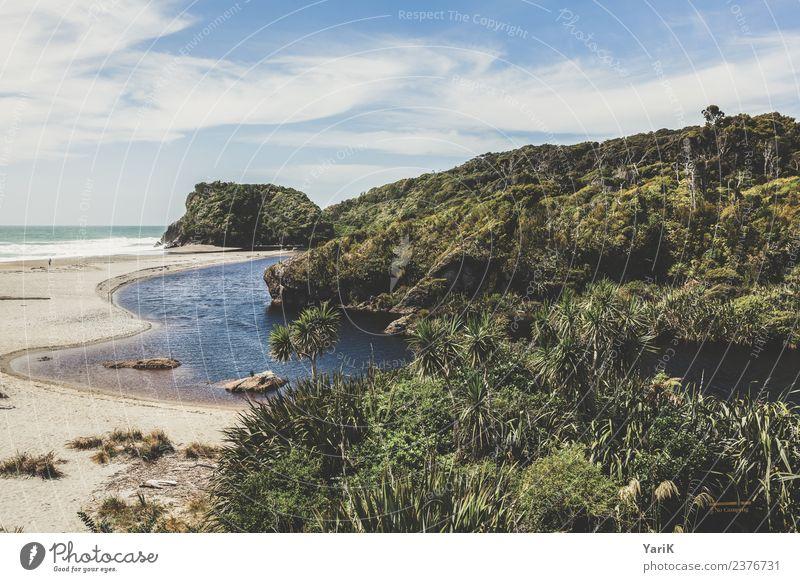 vom Sumpf ins Meer Ferien & Urlaub & Reisen Tourismus Ausflug Abenteuer Ferne Strand wandern Pflanze Wasser Himmel Sommer Schönes Wetter Urwald Küste Flussufer