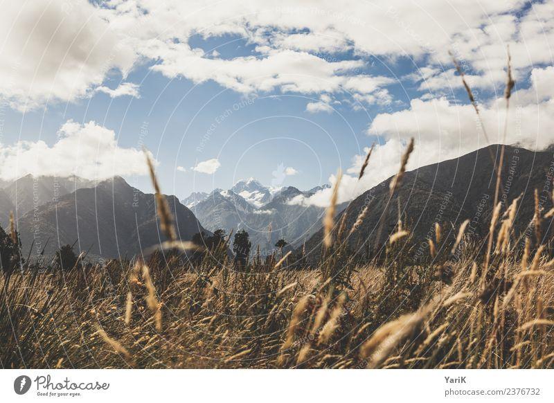 Mount Tasman and friends Himmel Natur Ferien & Urlaub & Reisen Pflanze Sommer Landschaft Ferne Berge u. Gebirge Wärme Wiese Gras Tourismus Freiheit Ausflug