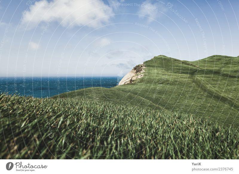Cape Farewell Ferien & Urlaub & Reisen Tourismus Ausflug Abenteuer Ferne Freiheit Sightseeing Sommer Sommerurlaub Meer Insel Natur Landschaft Wasser Himmel