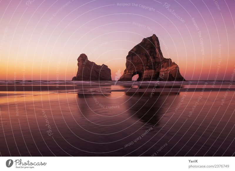 pink Wharariki Natur Landschaft Urelemente Sand Wasser Wolkenloser Himmel Horizont Frühling Sommer Schönes Wetter Felsen Strand Meer Wärme rosa rot Neuseeland