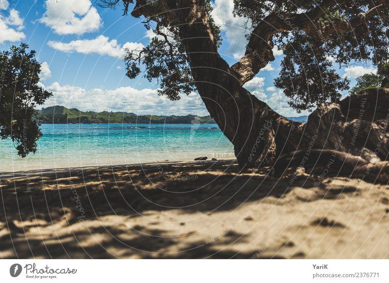 Whale Bay Himmel Natur Ferien & Urlaub & Reisen Sommer blau schön Wasser Sonne Meer Strand Ferne Tourismus Freiheit Sand Ausflug Wellen