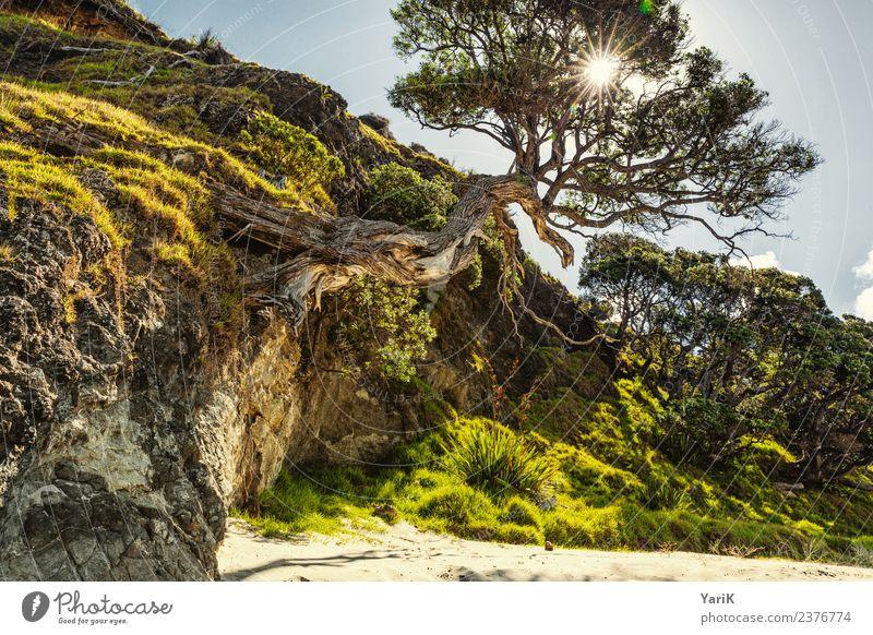 The Beach Ferien & Urlaub & Reisen Tourismus Ausflug Abenteuer Ferne Freiheit Sightseeing Kreuzfahrt Camping Sommer Sommerurlaub Sonne Sonnenbad Strand Meer