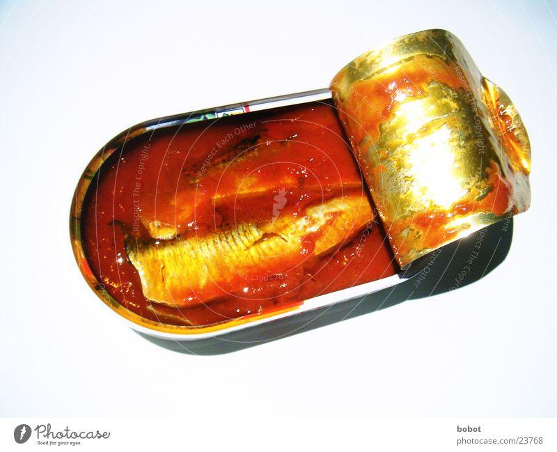 Fisch in Tomate Ernährung Fisch Erdöl Tomate Dose Blech Fischereiwirtschaft Gemüse Saucen Meeresfrüchte Konservendose