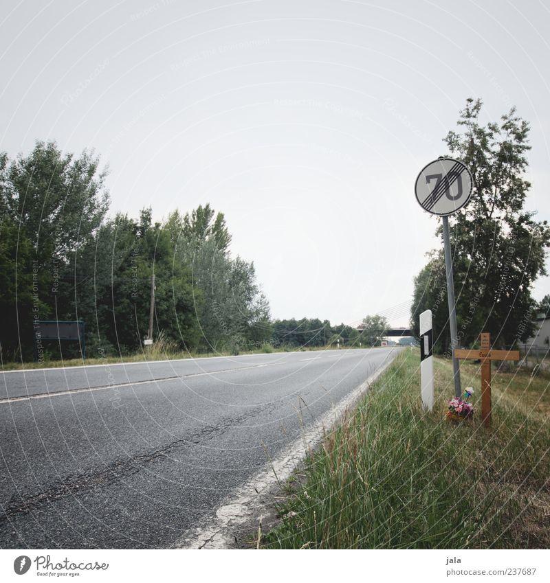 nur ein wimpernschlag... Baum Blume Pflanze Straße Tod Gras Traurigkeit Landschaft Geschwindigkeit Trauer Sträucher Kreuz Verkehrswege Straßenbelag Unfall