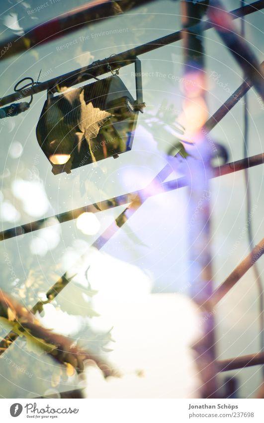 blättrige Lampe am Gerüst Natur grün blau Freude Blatt Gefühle Stimmung Beleuchtung Design ästhetisch violett einzigartig Konzert Stahl Veranstaltung