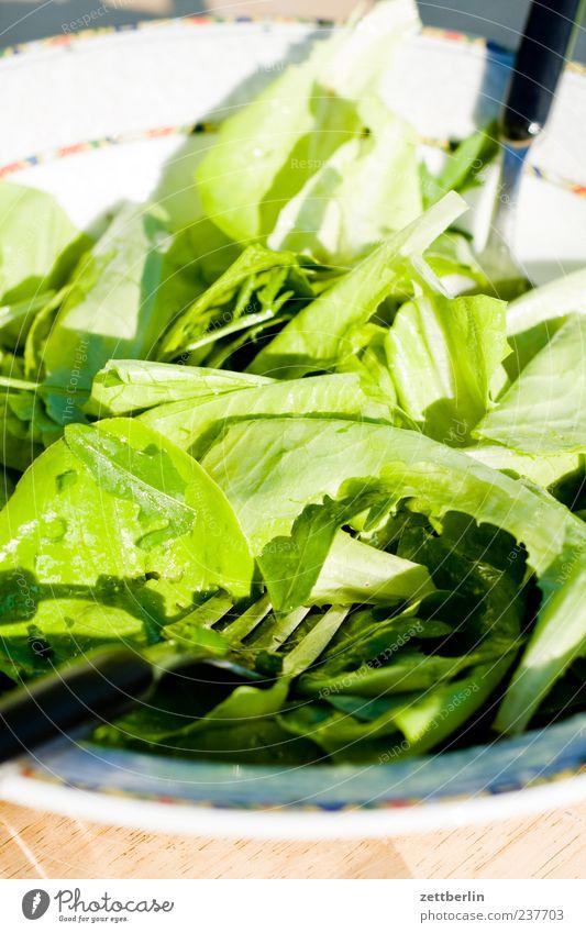Salat Salatbeilage Kräuter & Gewürze Ernährung Bioprodukte Vegetarische Ernährung Diät Slowfood frisch grün Gabel Farbfoto mehrfarbig Außenaufnahme Nahaufnahme