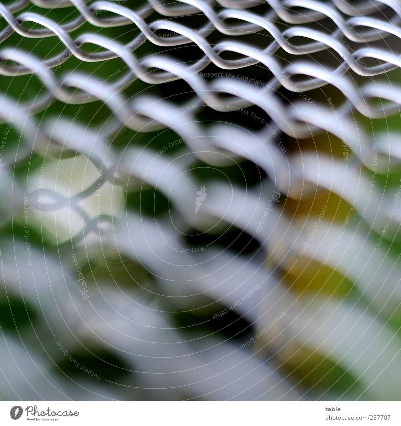 fence Umwelt Metall Netz Netzwerk glänzend dunkel hell grau silber weiß Sicherheit Ordnungsliebe ästhetisch bizarr Zusammenhalt Maschendrahtzaun Drahtgeflecht