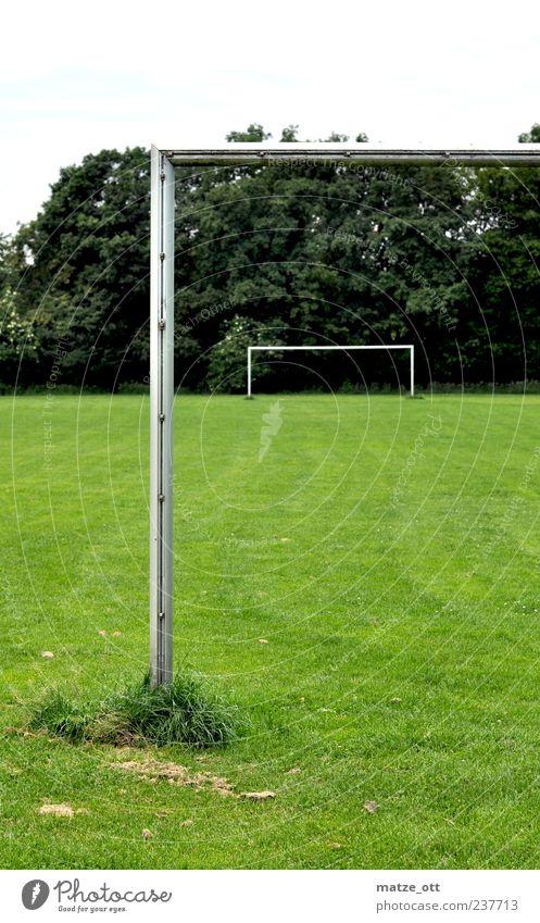 Tor im Tor grün Baum ruhig Einsamkeit Gras Freizeit & Hobby Fußball leer Pfosten Fußballplatz Fußballtor Ballsport unbenutzt grasgrün Sportstätten Lattenkreuz