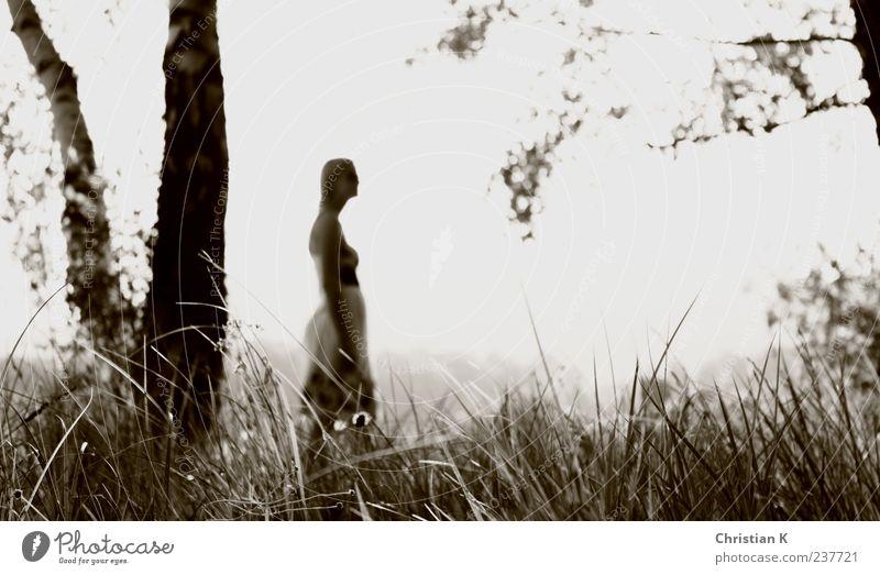dreaming Mensch Frau Natur Jugendliche Erwachsene Umwelt Landschaft Wiese feminin Leben Gefühle träumen Stimmung 18-30 Jahre weich Schönes Wetter