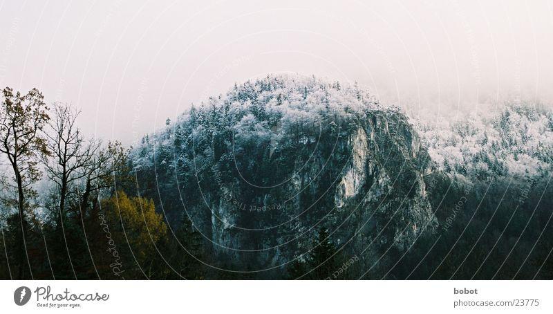 Steilwand Baum Blatt Winter Wolken Stein Bayern Berge u. Gebirge Felsen Schnee Gröll