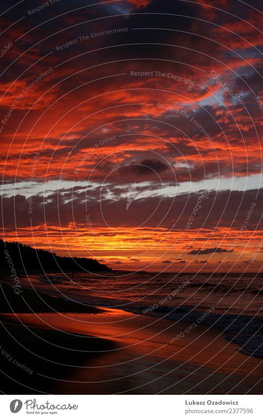 Sonnenuntergang am Meer Umwelt Natur Landschaft Erde Sand Luft Wasser Himmel Wolken Horizont Sonnenaufgang Schönes Wetter Küste Strand Ostsee authentisch