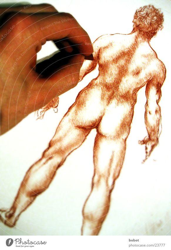Der DaVinci in mir Zeichner Gemälde Anatomie Mann nackt Hand Leonardo Künstler Zeichnung Rötel Kreide zeichnen Mensch Muskulatur Hinterteil Rücken streichen