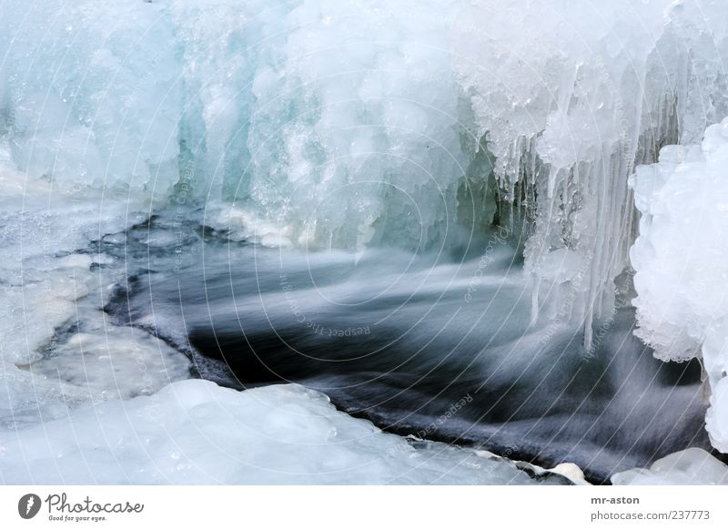 Icy Water Umwelt Natur Landschaft Urelemente Wasser Winter Eis Frost Bach Wasserfall außergewöhnlich Flüssigkeit frisch nass blau weiß kalt Klima Farbfoto