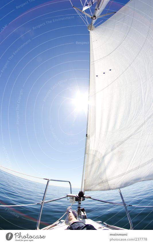 sail away Natur blau Wasser weiß Ferien & Urlaub & Reisen Sonne Meer Sommer ruhig Freiheit Freizeit & Hobby Abenteuer Schönes Wetter Ostsee Schifffahrt Segeln