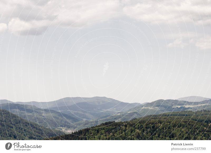 Freiraum schaffen Himmel Natur schön Baum Wolken Einsamkeit Wald Ferne Erholung Umwelt Landschaft Berge u. Gebirge Freiheit Luft Wetter Freizeit & Hobby