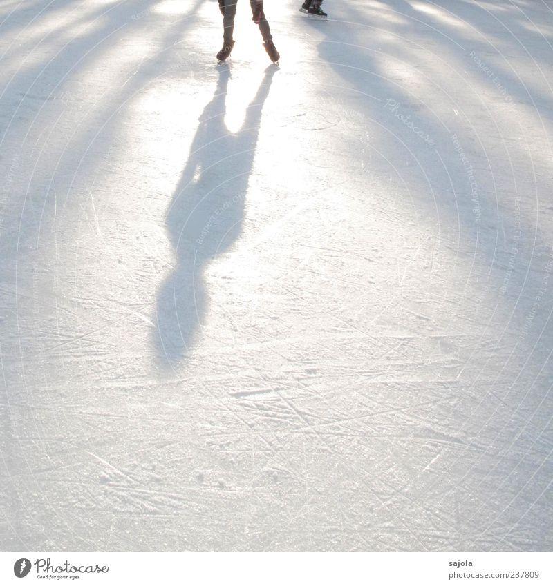 art on ice II Mensch weiß Winter Sport Eis Freizeit & Hobby ästhetisch stehen Sportler Wintersport Schlittschuhlaufen Gegenlicht Schattenspiel Silhouette Schattenseite Sportstätten