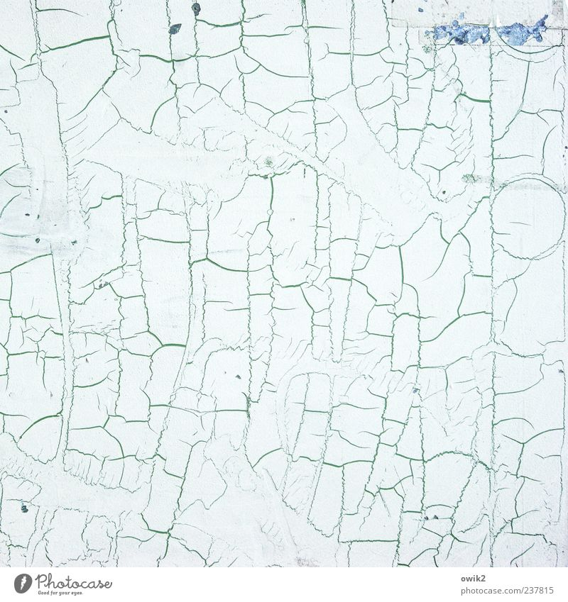 Kartographie blau alt weiß Farbe Wandel & Veränderung einzigartig Vergänglichkeit einfach dünn chaotisch Riss Desaster abblättern hell-blau Oberflächenstruktur
