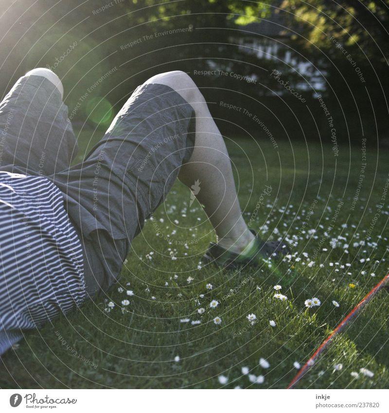 ...Feierabend! Erholung ruhig Freizeit & Hobby Mann Erwachsene Leben Beine Gras Gänseblümchen Rasen Garten Wiese Hemd Hose Shorts Clocks liegen grün Gefühle