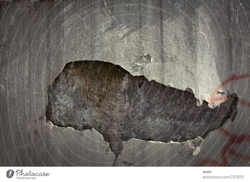 *1.300* Bild aus Wal Haus Hausbau Renovieren Kunst Kunstwerk Mauer Wand Fassade Tier Pottwal Beton alt authentisch dreckig kaputt lustig trist trocken