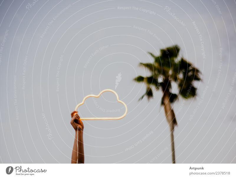 Ein Arm hält ein Wolken-Neonzeichen hoch. Neonlicht neonfarbig Zeichen Hinweisschild elektrisch modern Zukunft Palme Baum Außenaufnahme Sommer Himmel blau