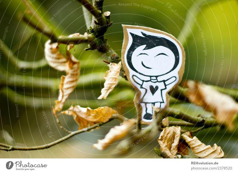 Pappland | im Geäst Mensch Natur Baum Freude Wald Umwelt Herbst Junge Glück außergewöhnlich Zufriedenheit maskulin Kindheit Kreativität Lächeln Fröhlichkeit
