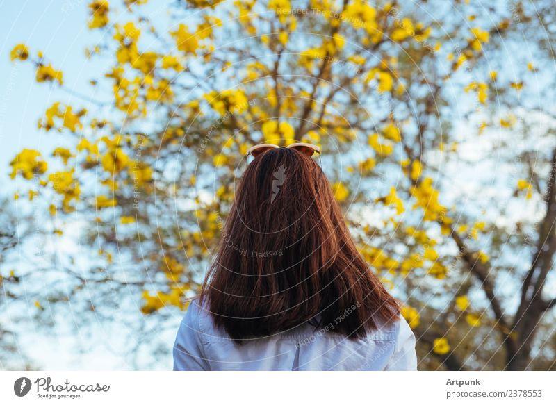Eine junge Frau, die auf einen Baum schaut. gelb Blatt weiß Hemd Himmel Ast Frühling Sommer langhaarig Blume Sonnenbrille Wald Holz Natur Außenaufnahme
